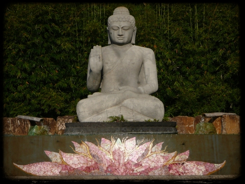 buddha-and-lotus-flower