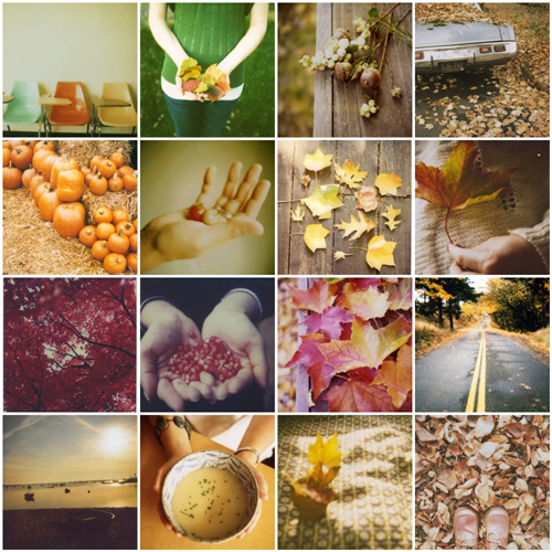 hello autumn - a mosaic of polaroids from flickr