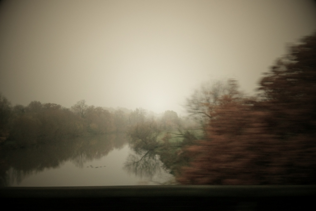 photo of trees and water, impressionistic. Copyright Leonie wise