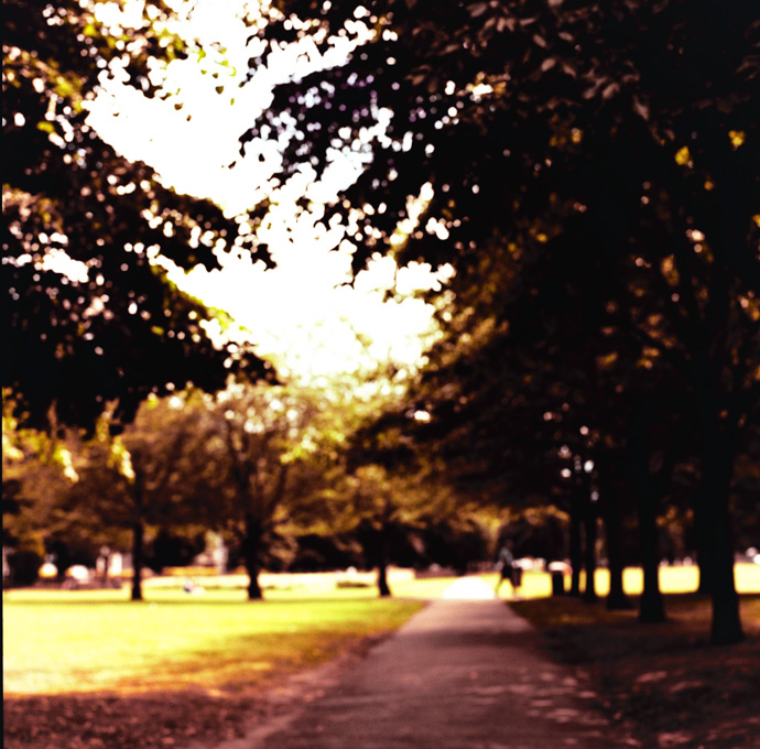 cross-processed, medium format photograph of a park. copyright leonie wise