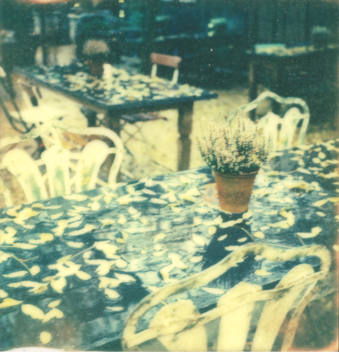 polaroid photograph of a table surrounded by chairs and covered with leaves. copyright leonie wise