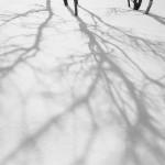 shadows and horizons