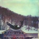 polaroid photograph of a big fish sign on top of a building in hokkaido, japan. copyright leonie wise. all rights reserved