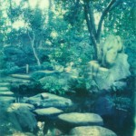 polaroid photograph of a japanese garden copyright leonie wise. all rights reserved