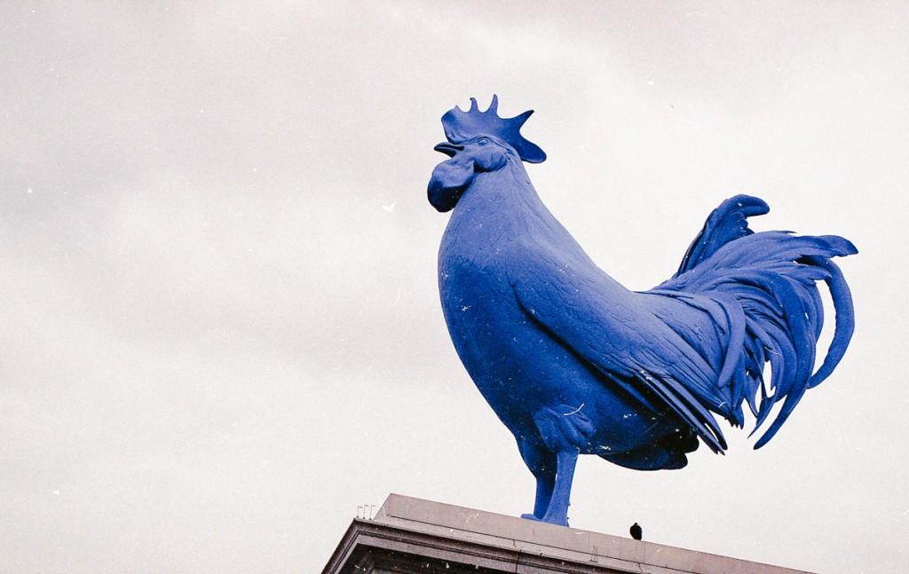 big blue rooster on the 4th plinth, trafalgar square
