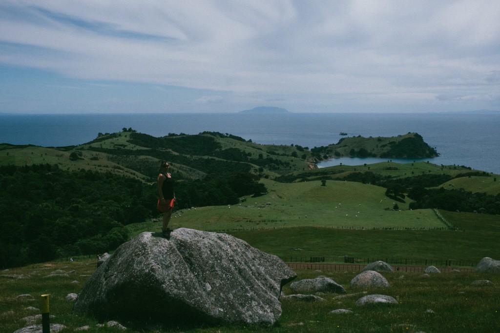opopo-bay-waiheke-island-12