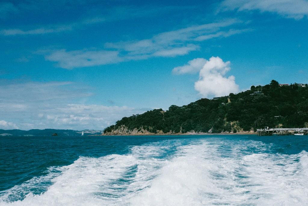 rotoroa-island-1