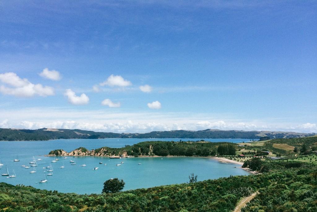 rotoroa-island-11