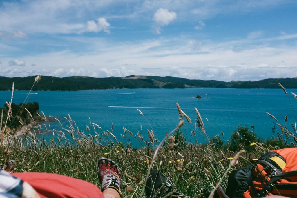 rotoroa-island-13