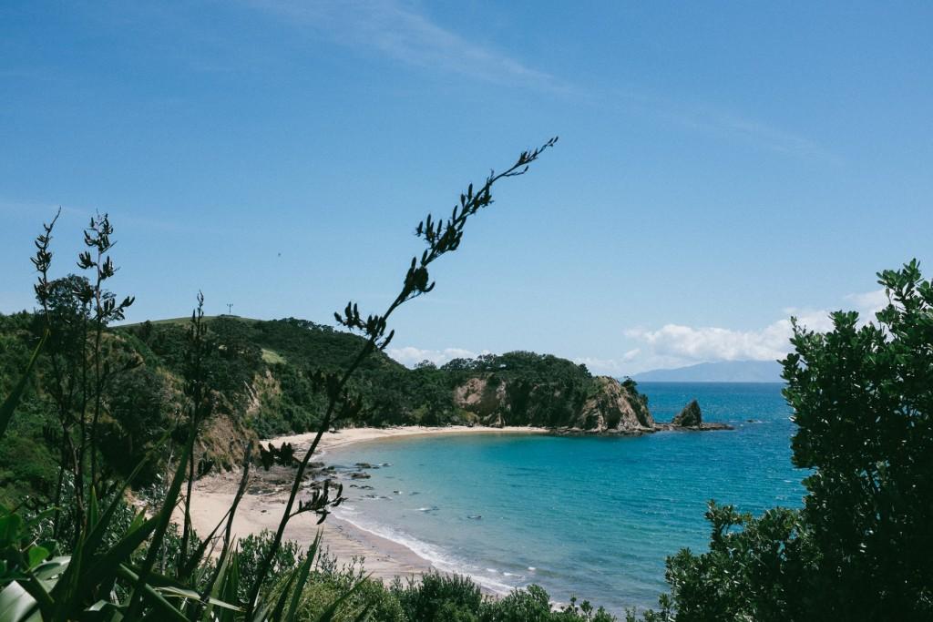 rotoroa-island-7