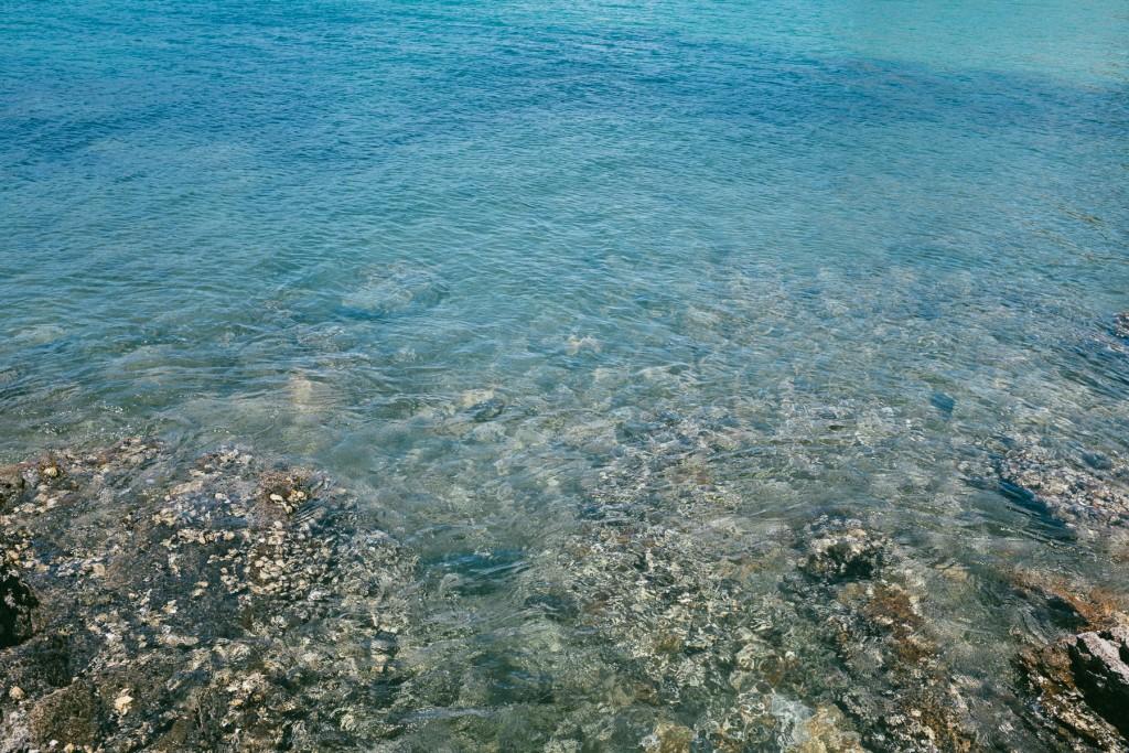 rotoroa-island-9