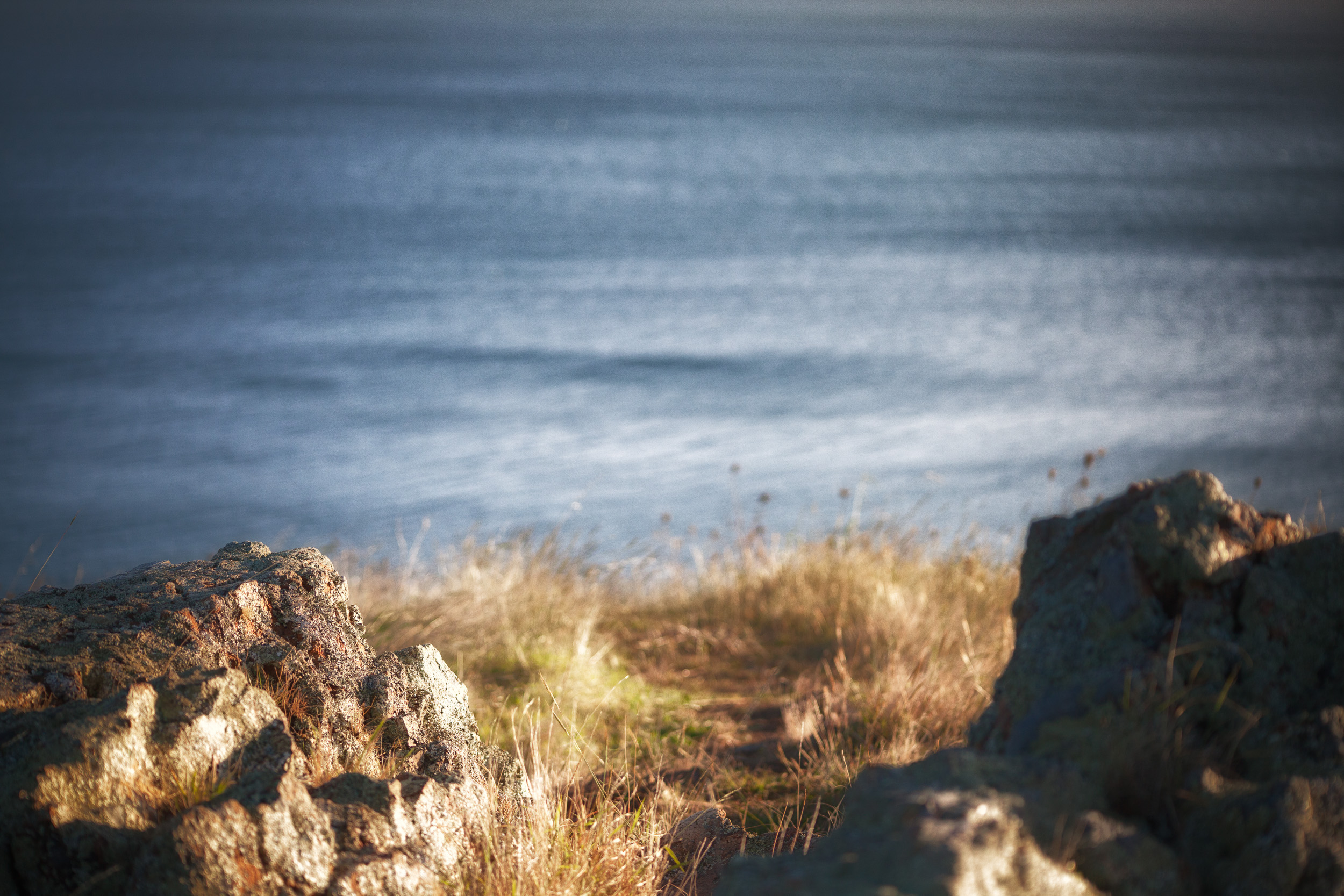 rocks and grasses - looking out to sea by leonie wise