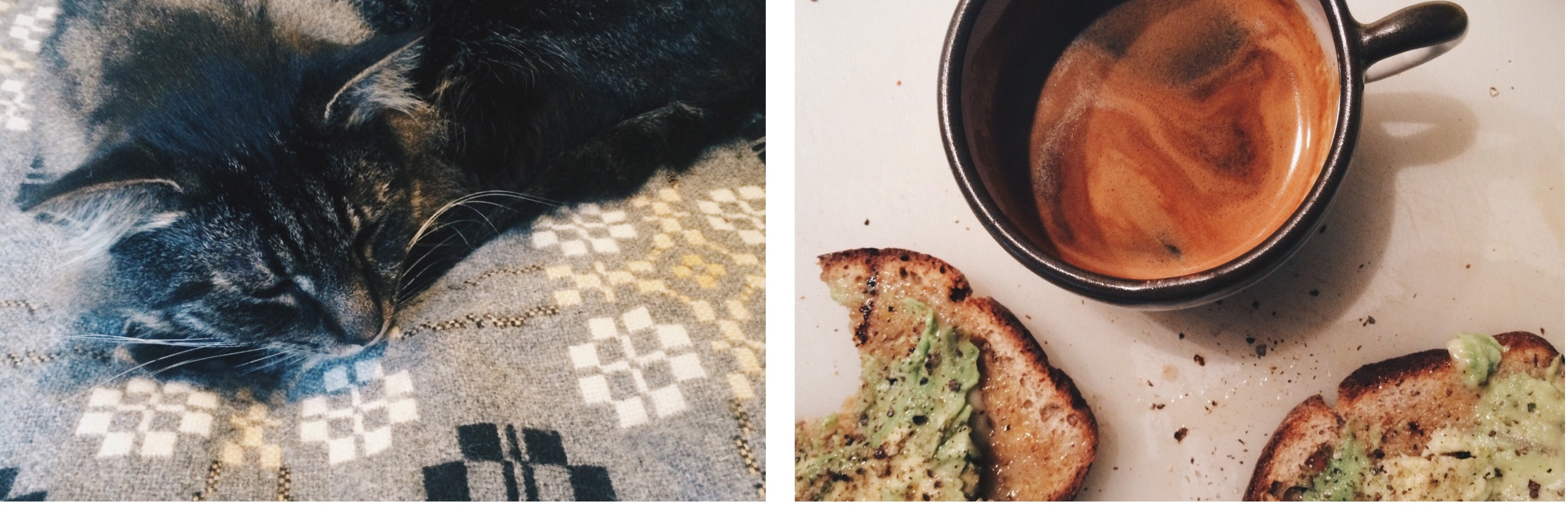 diptych. milo sleeping, toast & coffee. by leonie wise