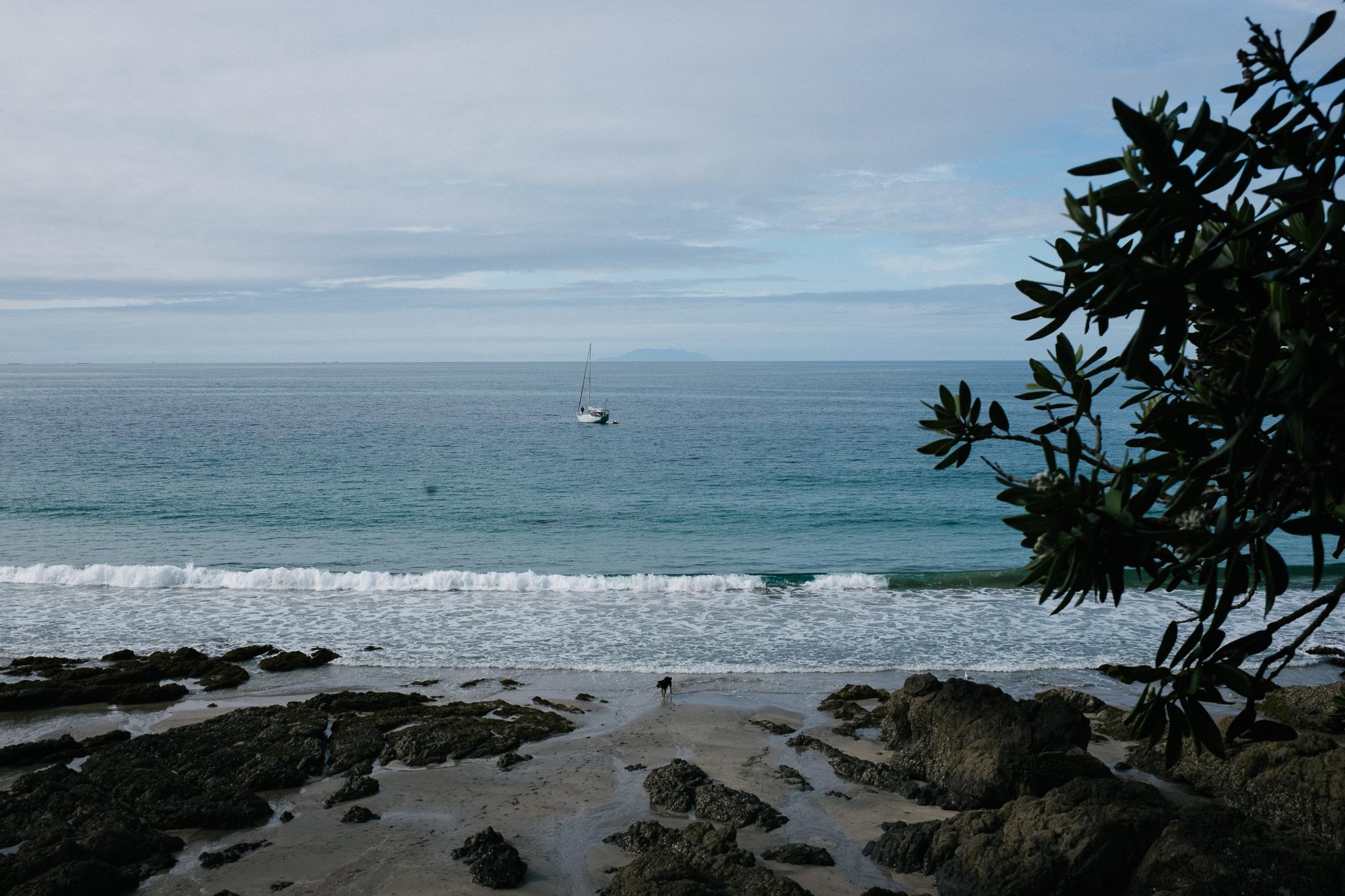 palm-beach-8