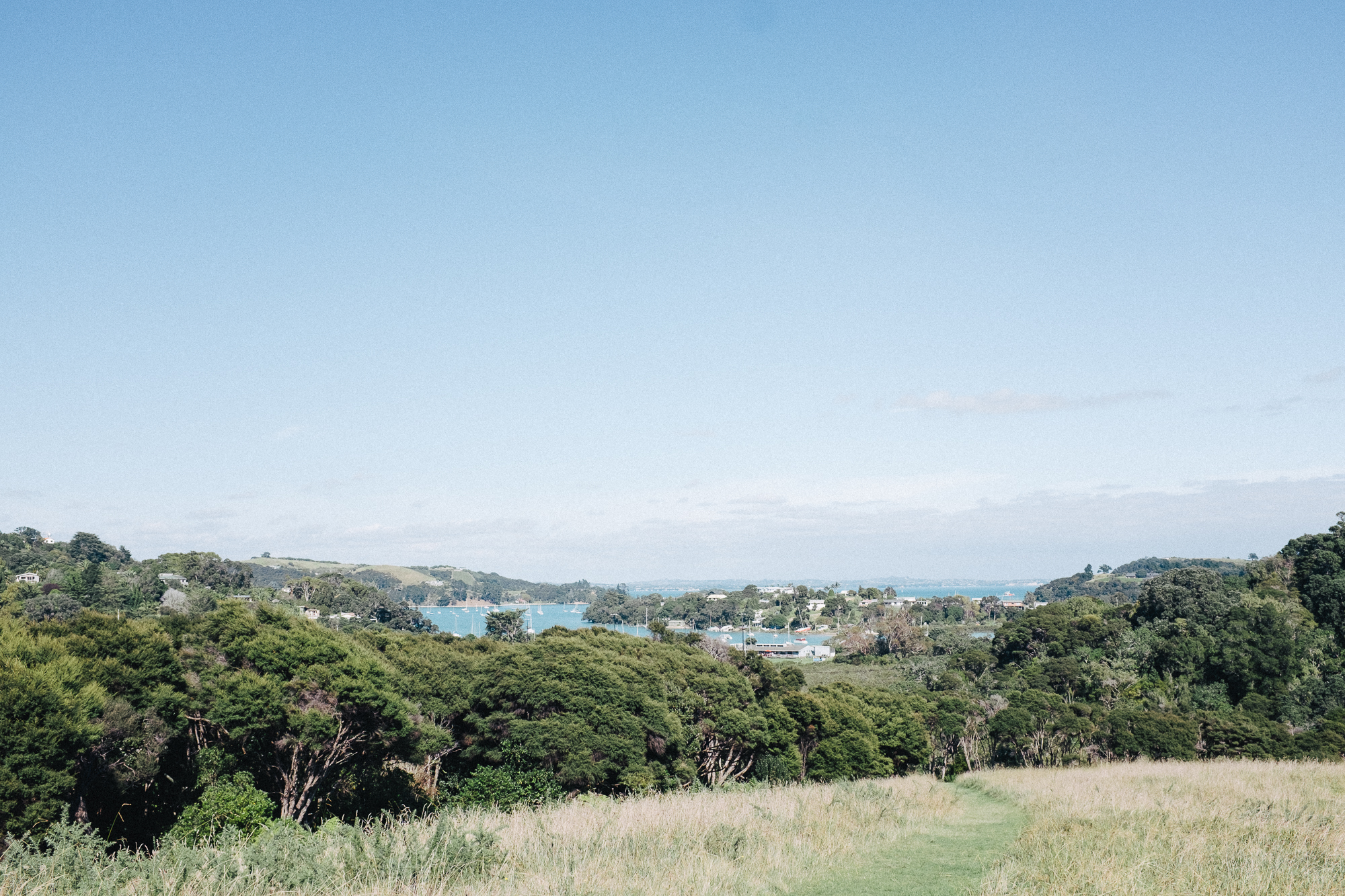 Looking down the hill at Te Toki reserve towards the causeway by leonie wise