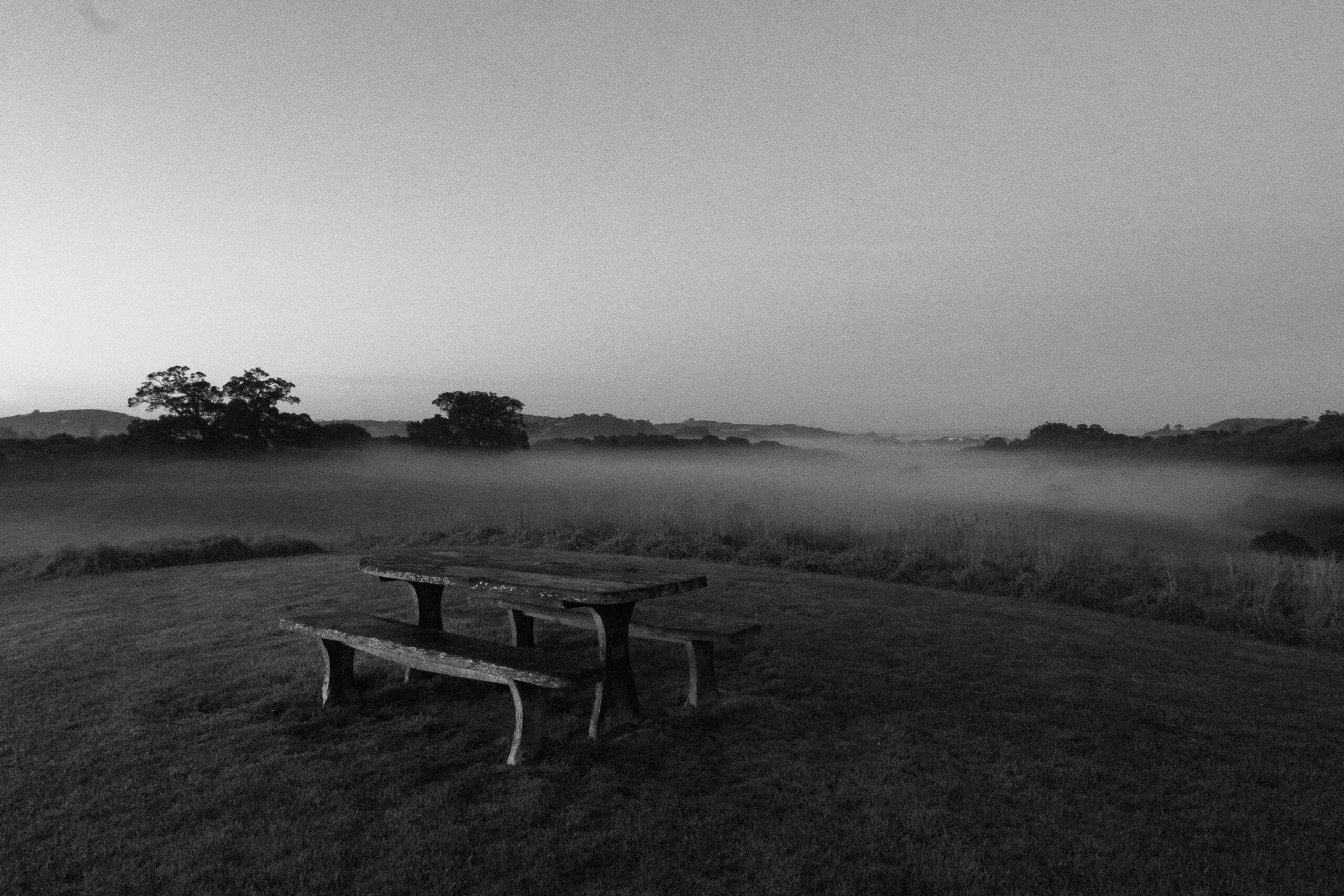 morning fog at te toki park waiheke island (c) leonie wise